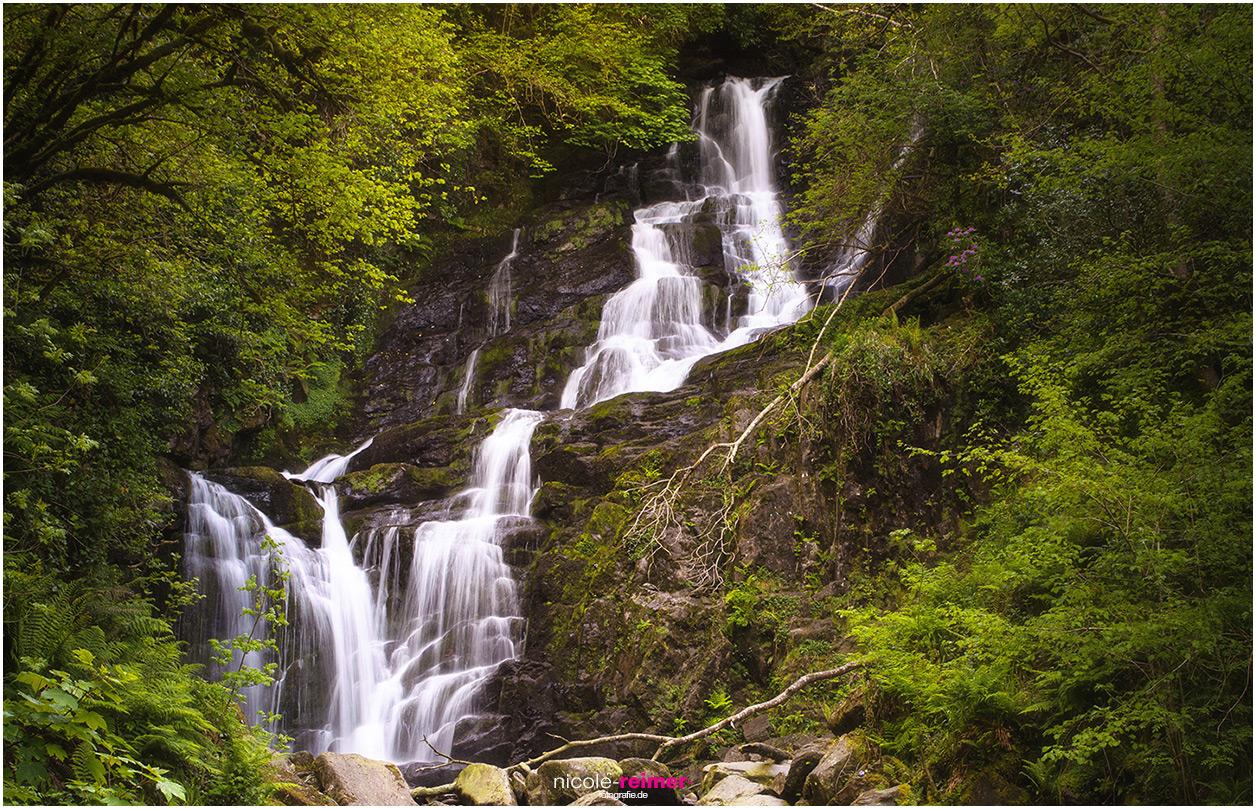 Torc Waterfall im Killarney Nationalpark im Mai - Nicole Reimer Fotografie
