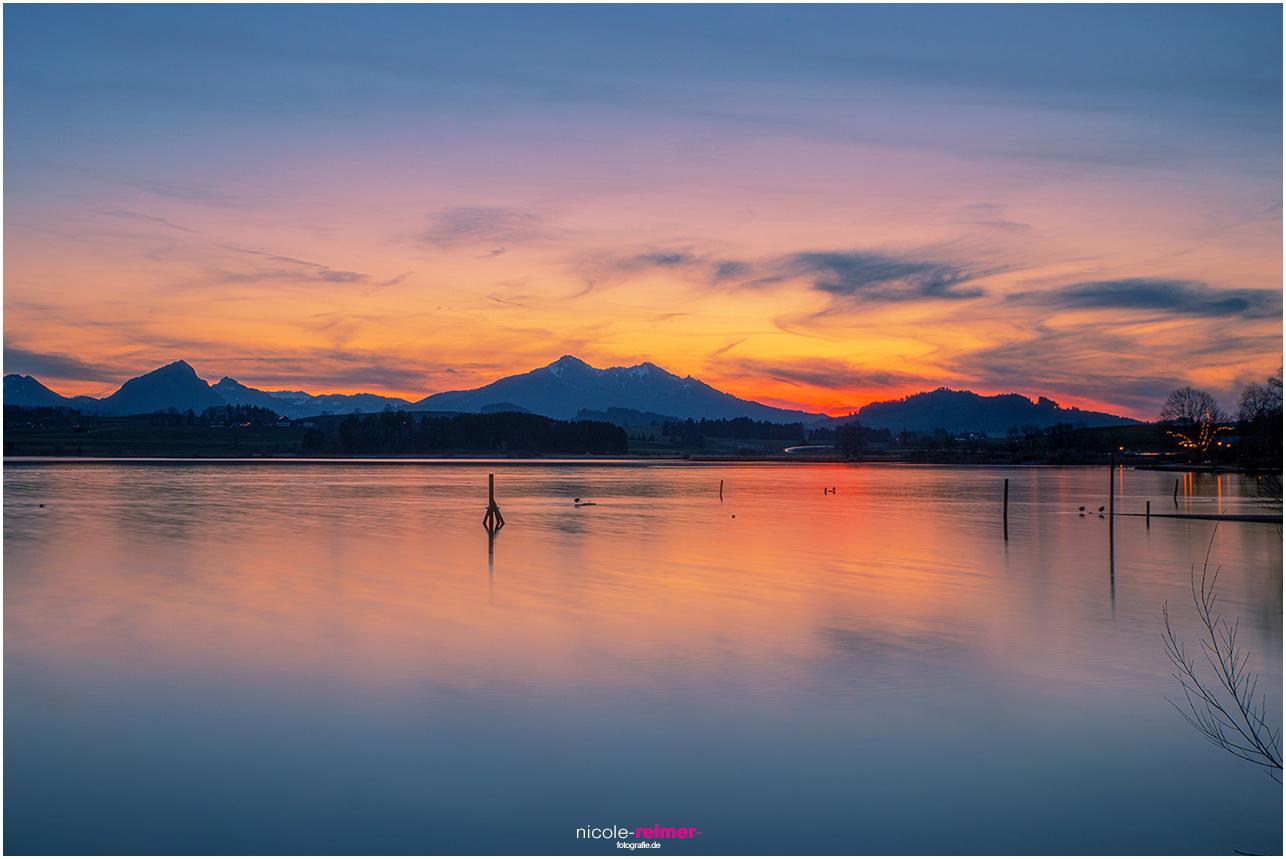 Blaue Stunde mit Glühendem Abendrot am Hopfensee - Nicole Reimer Fotografie