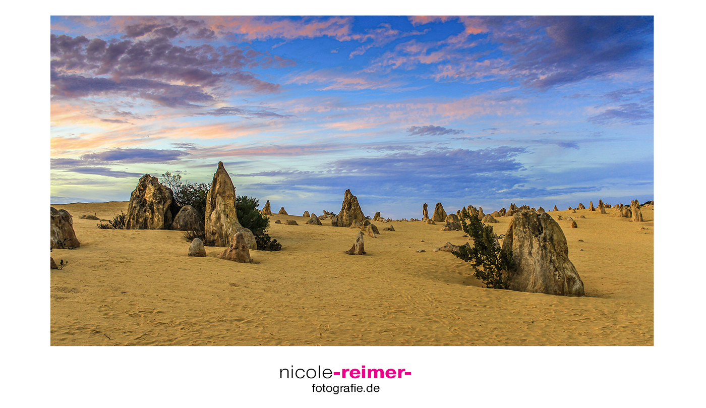 Pinnacles in der Abenddämmerung-Nicole Reimer Landschaftsfotografie