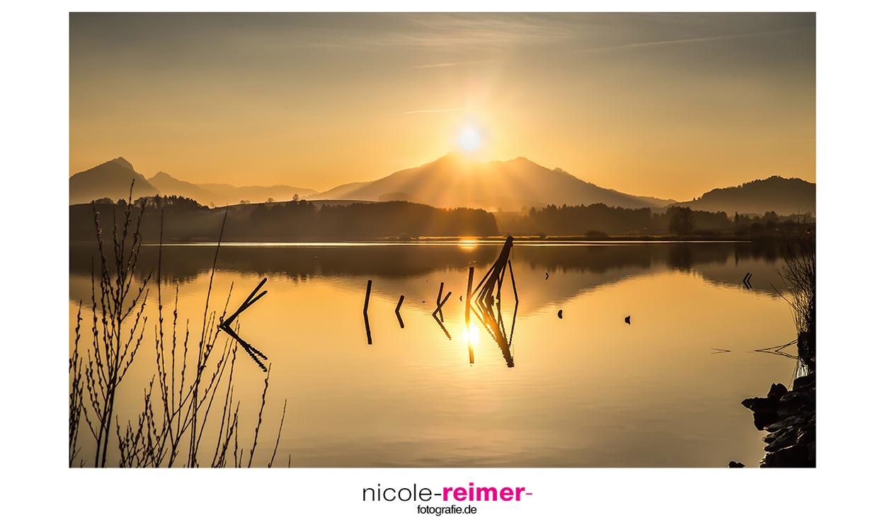 Der Hopfensee im Frühling bei Sonnenuntergang - Nicole Reimer Fotografie