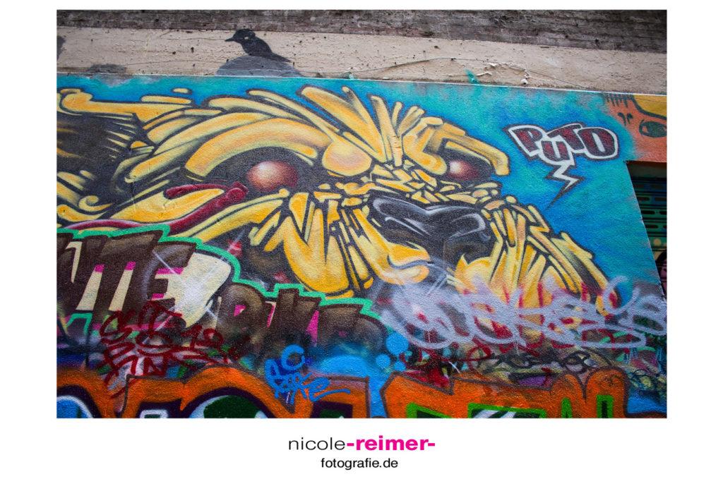 Street Art in Melbourne_Nicole Reimer Fotografie11